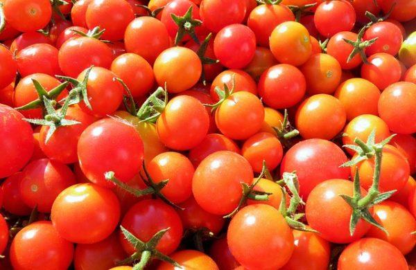 tomatoes-1545255_640