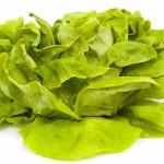 salat-150x150